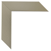 Gold Silver Canvas Frame